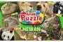 Puzzle Anak,Game Kembangkan imajinasi dan kreativitas Anak – Anak