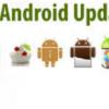 Persiapan Sebelum Upgrade Os Android Agar Sukses