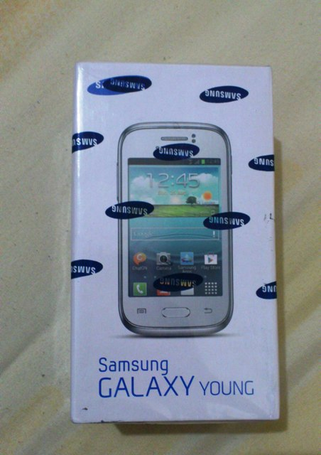 Samsung Galaxy Young S6310 2
